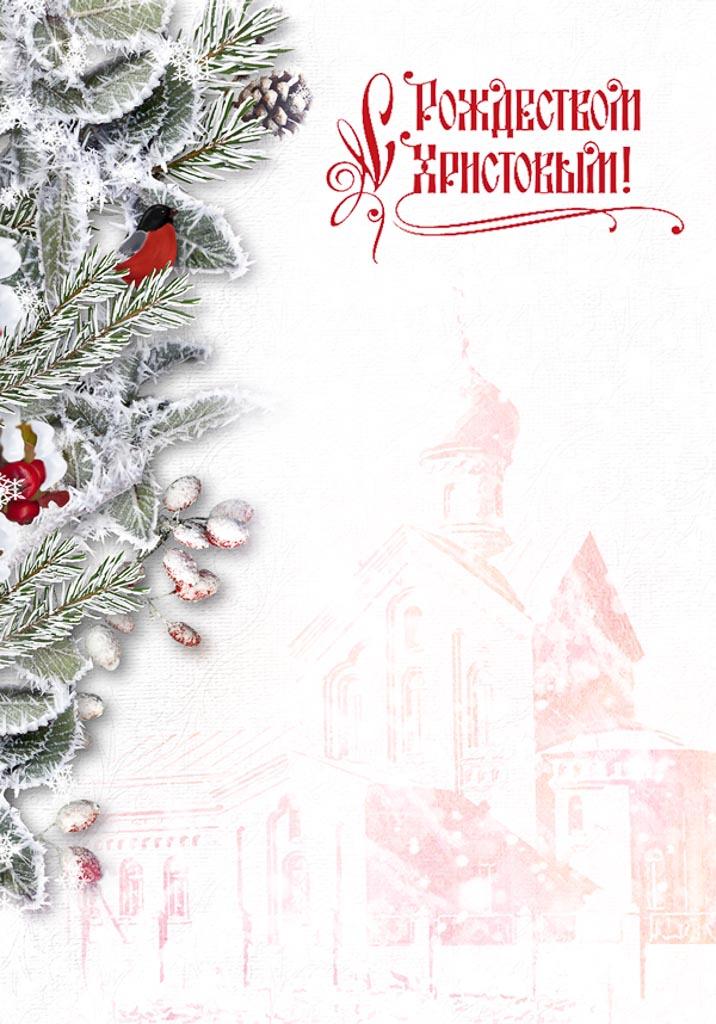 Новолетие и Рождество Христово 2016 года в Покровском храме